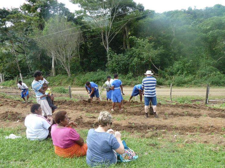 The vegetable garden taking shape at Korianisau Fiji with the help of Rotary