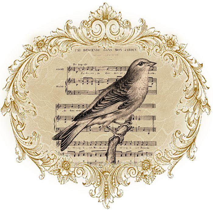 стене рядом птицы на белом фоне картинки для декупажа яворская появилась
