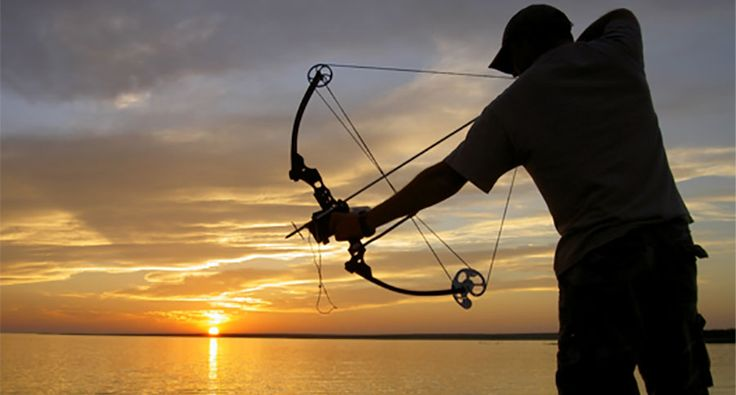 If you've always wanted to learn how to start bowfishing, we've got a few tips to consider.