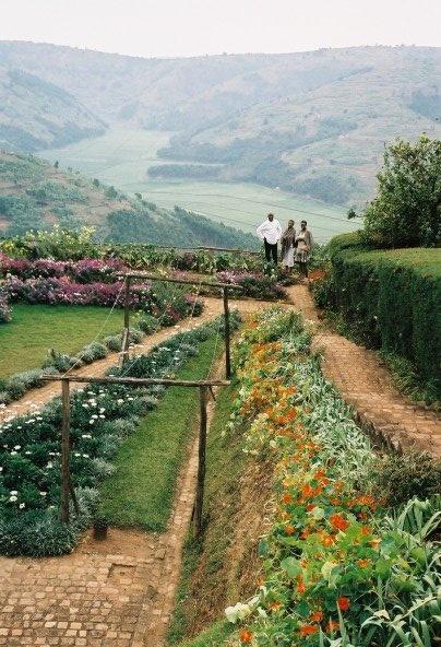Ugandan garden