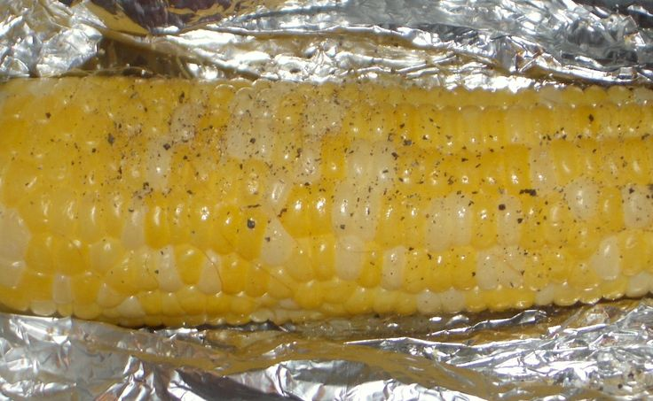 Success! Campfire Corn On The Cob: inexpensive, quick, easy, and oh so tasty.  It was perfect for our camping trip.