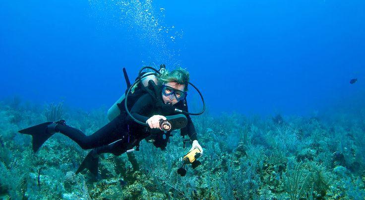 Une plongeuse en combinaison de plongée sous marine en exploration sur le spot des îlets Pigeon à Bouillante