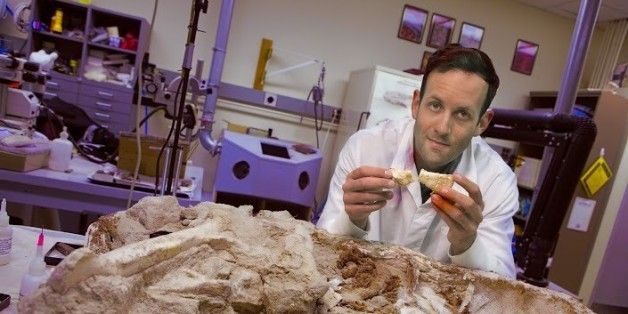 Dinosaurs May Have Been Warm-Blooded After All