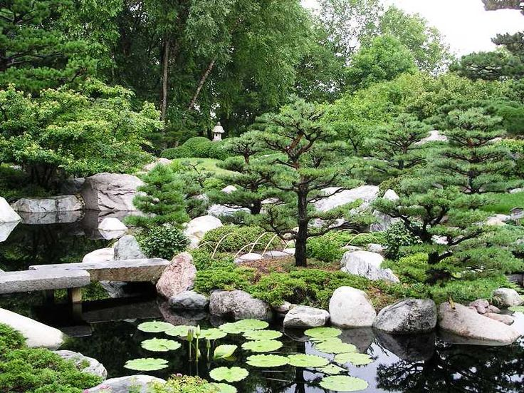 120 best outdoors landscaping asian gardens images on for Small japanese garden pond