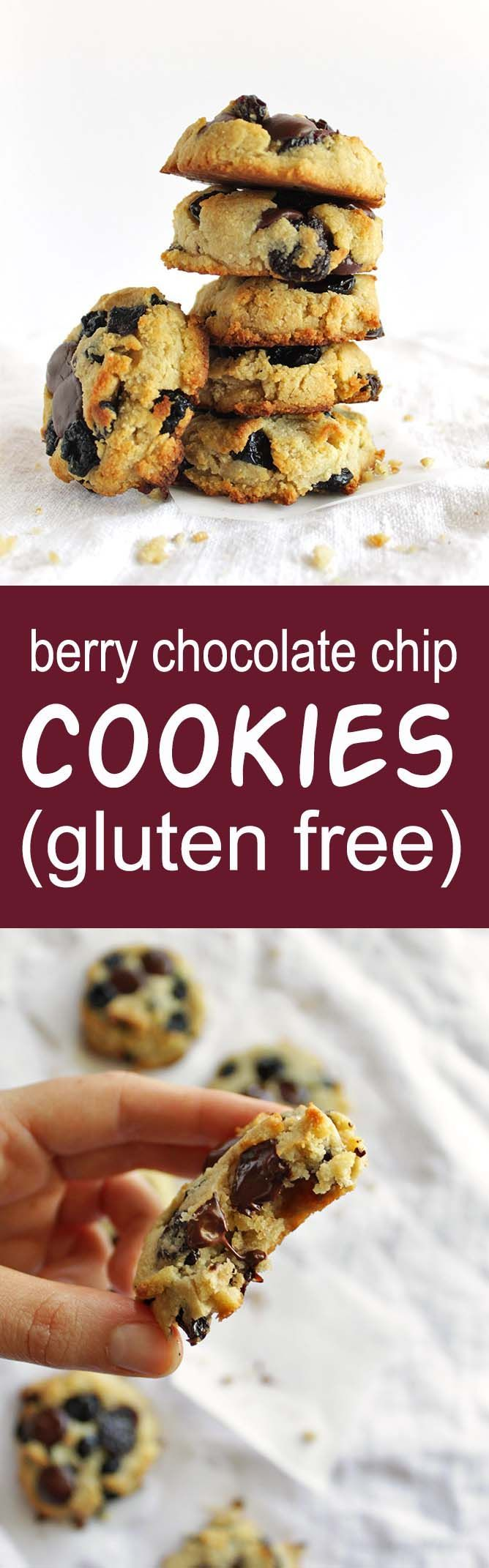 Berry Chocolate Chip  Berry Chocolate Chip Cookies (Gluten Free) - Soft cookies that are studded with tart dried cherries, sweet dried blueberries, and rich dark chocolate chips. Plus this recipe only requires one bowl! So YUM! |  robustrecipes.com  https://www.pinterest.com/pin/279082508141408799/