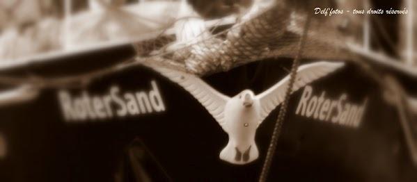 Rimouski le 6 juillet... Arrivée du Roter Sand d'Écomaris...