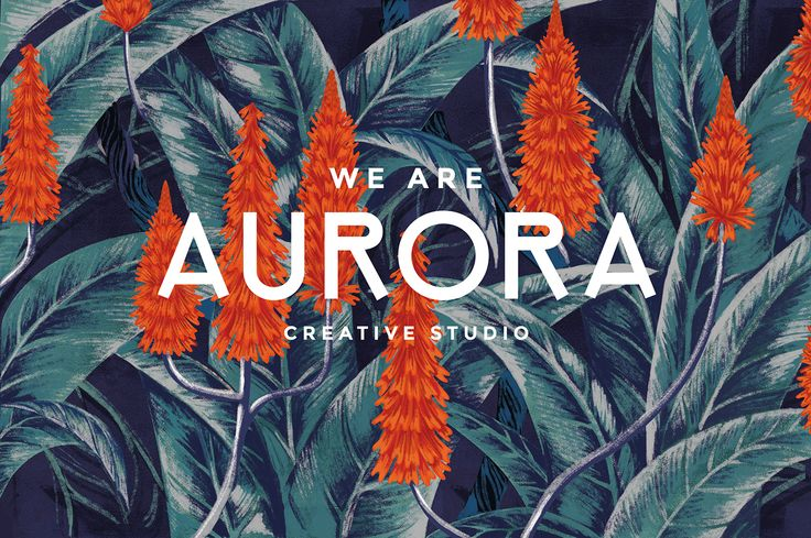 AURORA | Our Corporate Identity on Behance