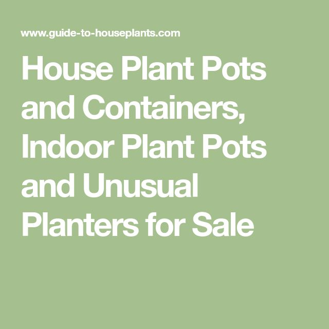 House Plant Pots and Containers, Indoor Plant Pots and Unusual Planters for Sale