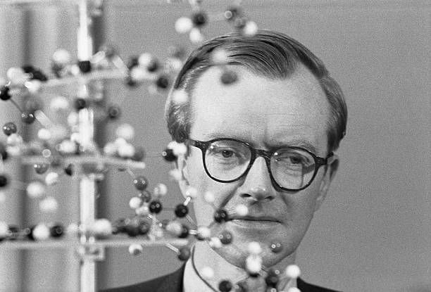 Of Men And Molecules Standing by the threedimensional model of a molecule Dr Maurice Hugh Frederick Wilkins was seen during a press conference held...