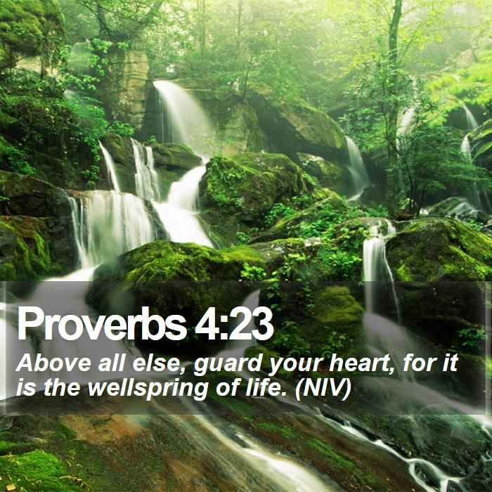 Money Quotes Wallpaper Pin By Bible Sms On Bible Verses Bible Text Bible