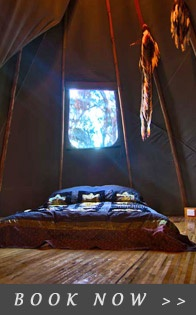 Tepee at Wollemi Wilderness Accommodation in the Blue Mountains.
