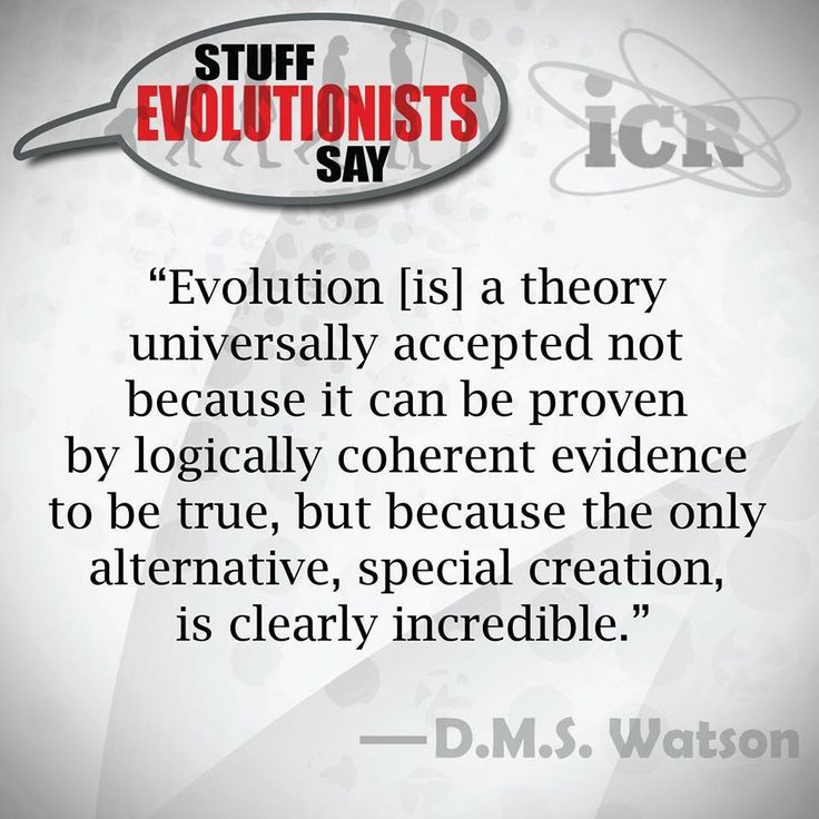 46 Best Images About Evidence For Creation On Pinterest