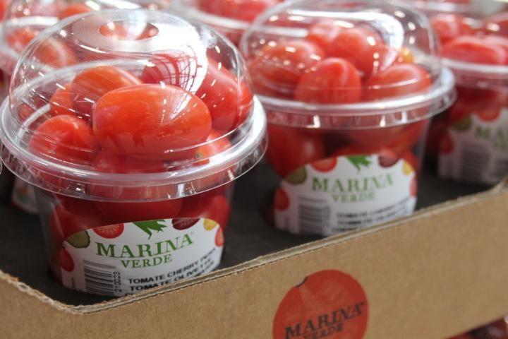 Marina verde snack tomatoes