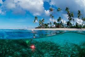 Hasil gambar untuk pantai wakatobi