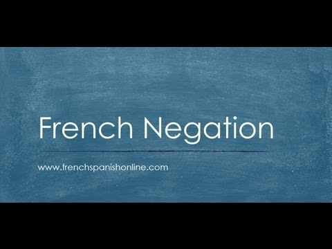 French Negation, the Negative in French
