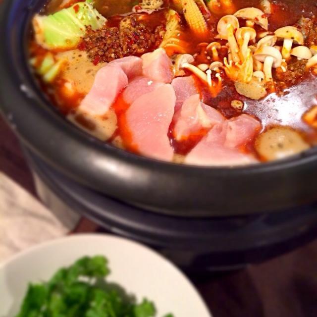 中華食材店で手に入れた火鍋の素でおうち火鍋むせる辛さ〜  お薬味に大好きなパクチーを合わせてみました - 86件のもぐもぐ - 本格火鍋〜✨ by 310pi