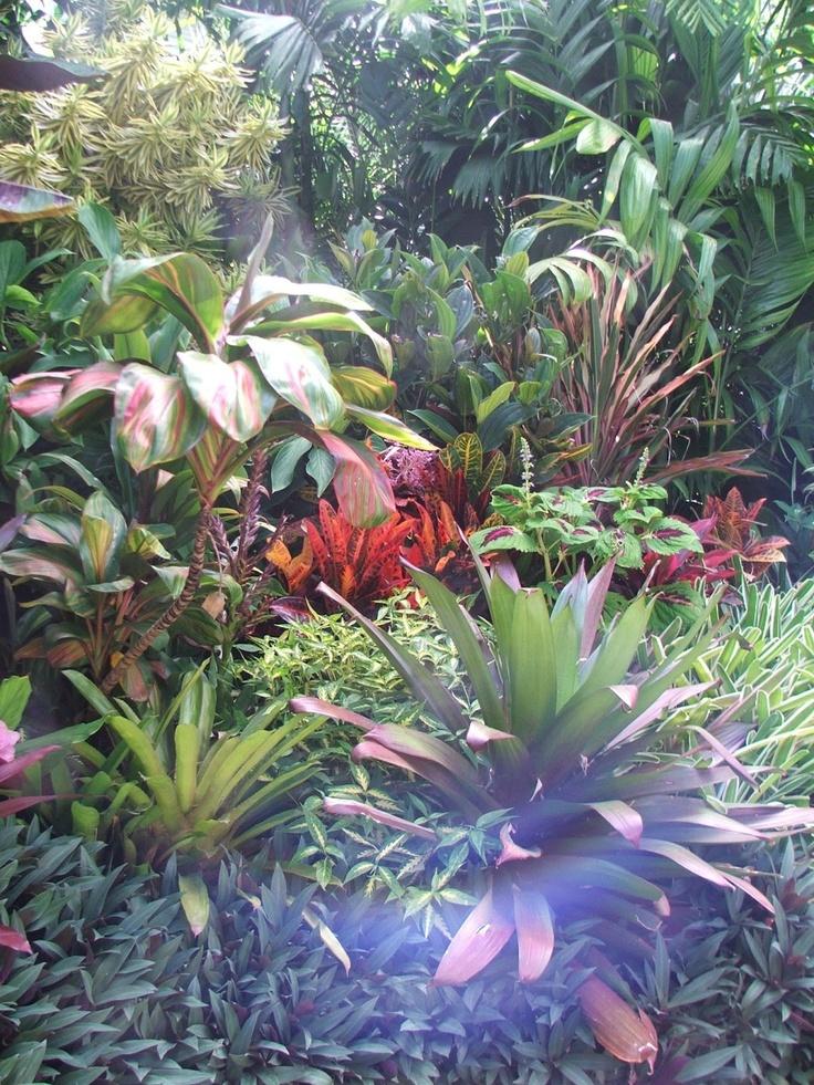 Dennis Hundscheidt's Tropical paradise