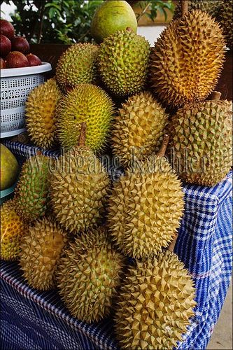 Durian fruit, said to be really good but really stinky smelling.