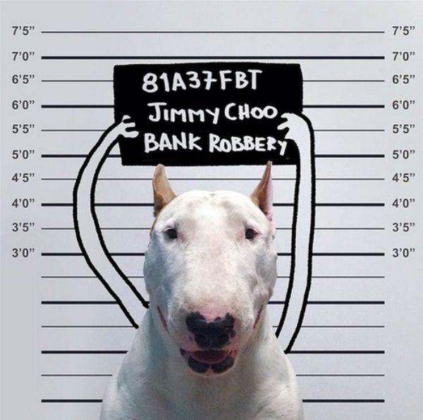 dog-art-12
