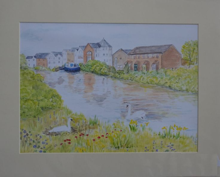 Swans At Gabriels wharf Exeter Quay. Art by  Janet Davies A3 print with a mount.