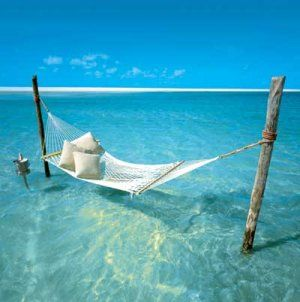A hammock above the sea over clear blue skies ~heavenly PrincessCruises Travel