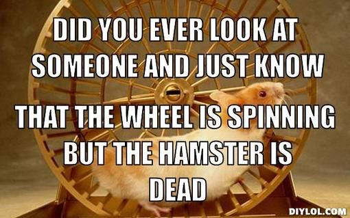 It happens almost daily Just Funny!!! Pinterest
