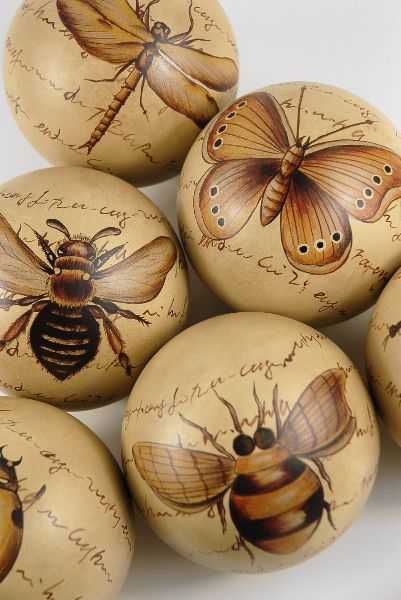Ceramic entomology balls with antique insect sketches. Each porcelain ball in the set of six has a different insect design