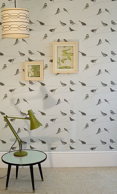Louise Body Bird Wallpaper we love this see our blog http://www.wallpaperdirect.com/blog/#/page/1