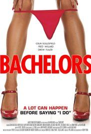 Final Episode Of The Bachelor 2015. Womanizing advertising executive Aaron tries to stop best friend Sean from falling into the eternal damnation of marriage by throwing a wild bachelor party to remind Sean of the joys of bachelorhood.