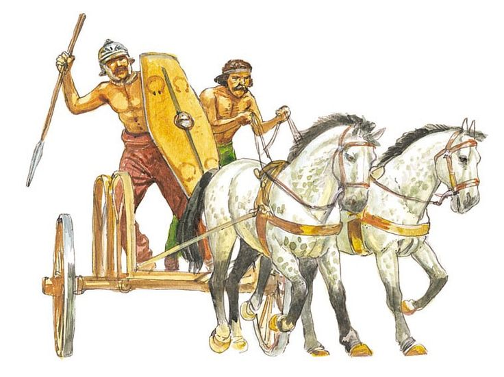 an introduction to the history of roman gladiators in rome Ancient roman gladiators - the life of a gladiator was much different than movies would portray discover what drove these men, and sometimes women, to fight to the death.