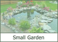 small garden designs ideas pictures
