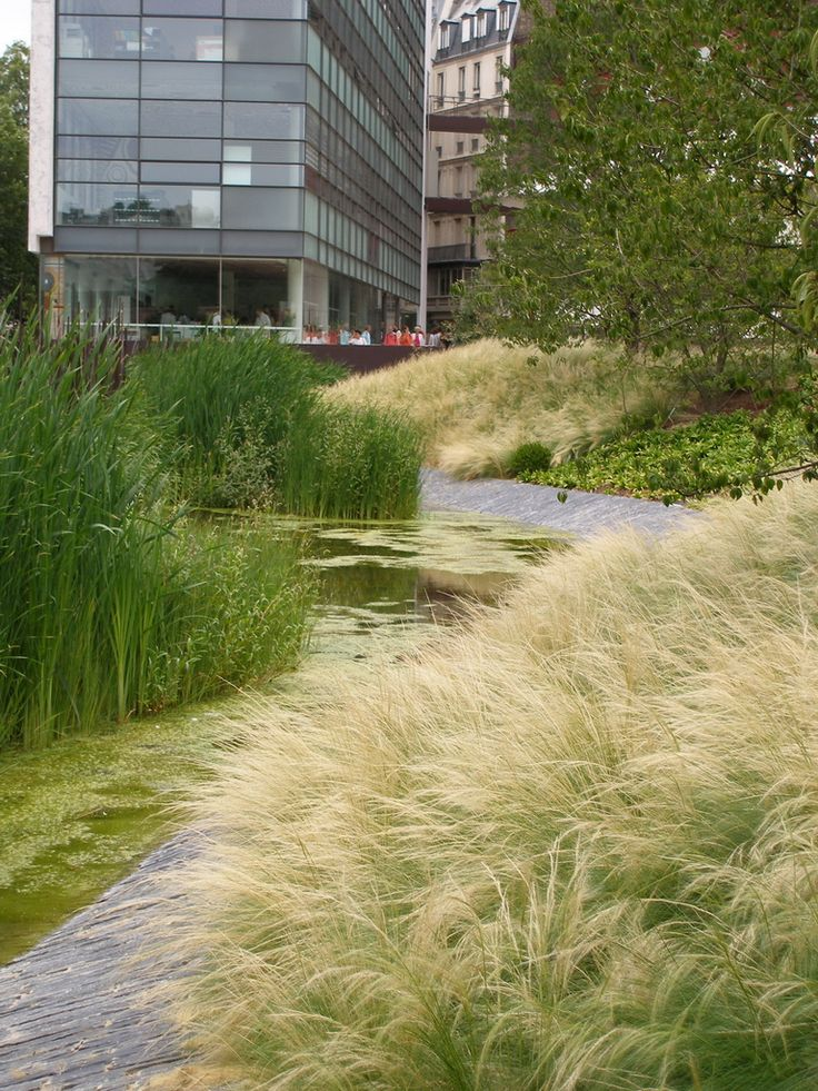 Basin at quai branly paris click image for source for Courtyard landscaping ottawa