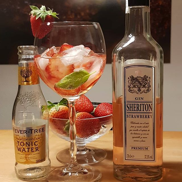 Sheriton Strawberry Gin Fever Tree Premium Indian Tonic strawberries basil. @fevertree_uk #gintonic #gin #gt #tonic #dandywithlens DandyWithLens.com
