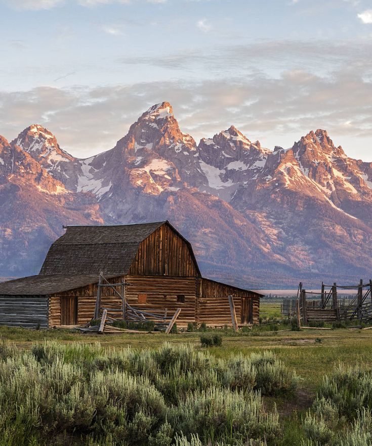 Grand Teton National Park Grand Teton National Park, Wyoming mountain grass sky mountainous landforms Nature wilderness mountain range field background hill landscape valley rural area rock plateau butte alps national park distance highland