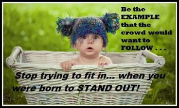 why fit in when you were born to stand out - Google-Suche
