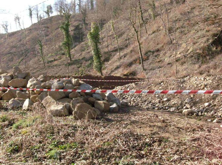 Piegaro, lavori illeciti in area boscata, denunce della forestale