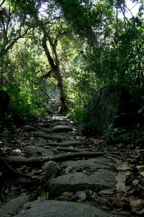 Colombia,caminos empedrados