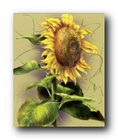 Adorn your living space with this wonderful Wall posters are an instant option to enhance the visual appeal of your domain. This wonderful piece of art will bring new color and life to any place in your home or office! It captures the image of a sunflower floral flowers looks very charming which is sure to make this wall art focal point of your home Wall décor art print poster. This beautiful wall poster will brighten up your room and make heads turn towards it.