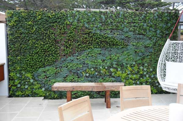 Living wall panels green walls roofs pinterest for Living wall systems