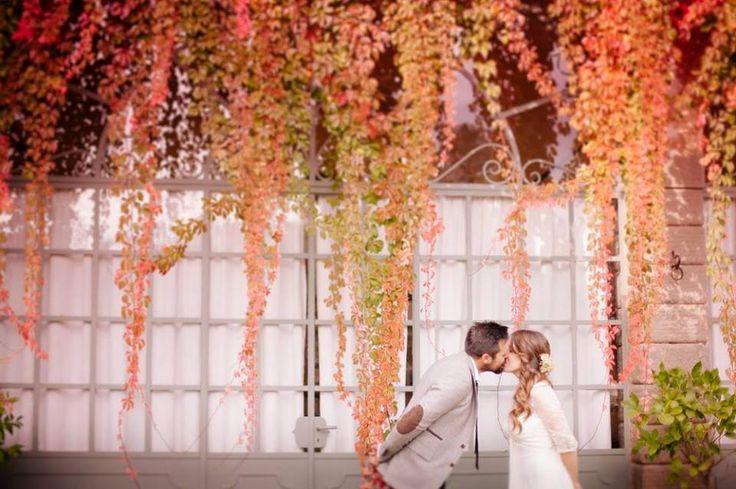 Wedding in Italy -  Palazzo Monti della Corte