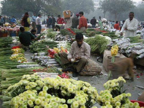 Top 5 de los mejores mercados de flores del mundo - Viajes con Destino