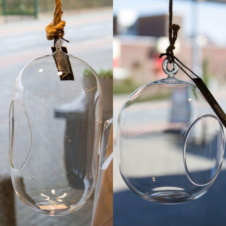 Hangende glazen vazen voor het raam met vetplantjes erin