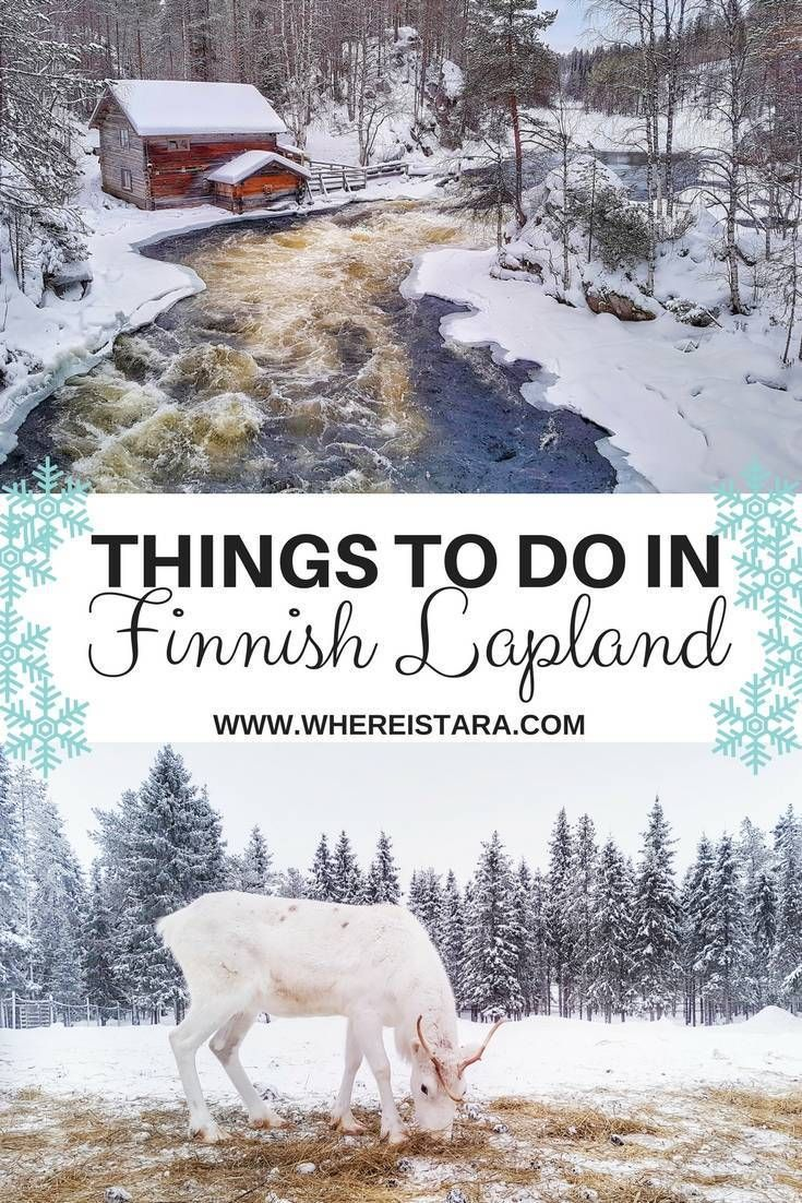 Things to do in Ruka Kuusamo, Finnish Lapland, Finland. From reindeer to skiing, snow-shoeing and ice-climbing. It's a winter wonderland.
