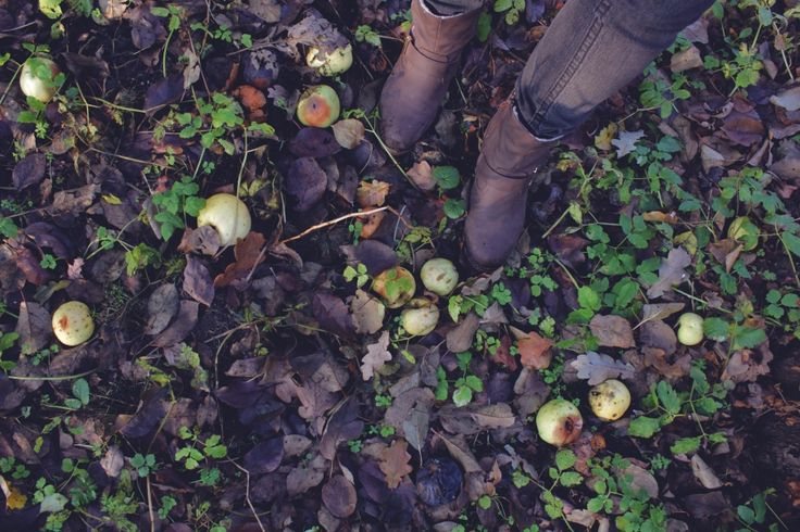 Last autumn.