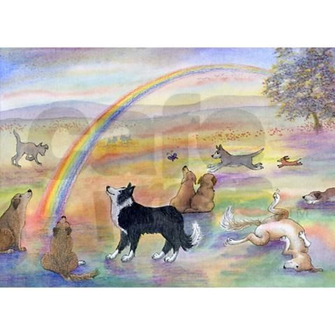 Dogs waiting at Rainbow Bridge