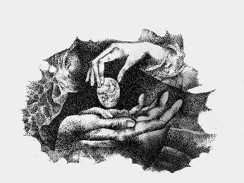Eva Prokopová-Kolmanová – Google+