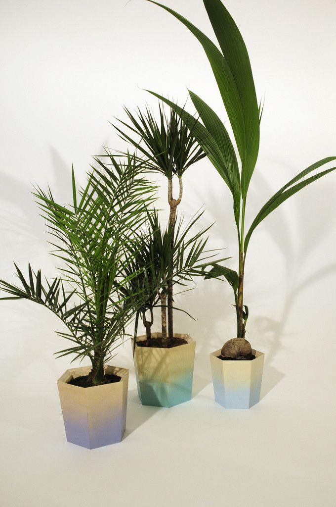 Hexagonal Plant Pot Small – Primary Grey
