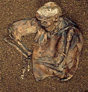 """Bog bodies"" is a term commonly used to classify the hundreds of human remains from northwestern Europe that date to the Iron Age (ca. 500 B.C.–A.D. 100). For the Celtic tribes that lived during this period, bogs were sacred settings for religious rituals, including dedications, offerings, and sacrifices."