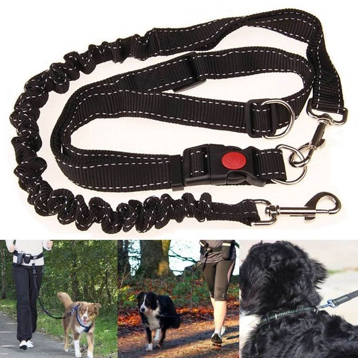 Nylon Adjustable Handsfree Elastic Dog Leash Collar Pet Harness Leash Running Jogging Waist Belt Pet Training Supplies Favor