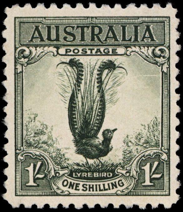 Australian-Postage-Stamp-Lyrebird